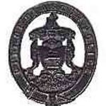 Glasgow helmet badge 1880-1912